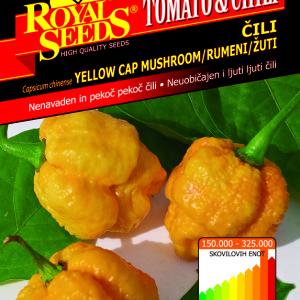 Chili mashroom yellow