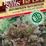 BIO_Solata red salad bowl