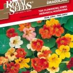 RS_Kapucinka top flowering jewel_oro
