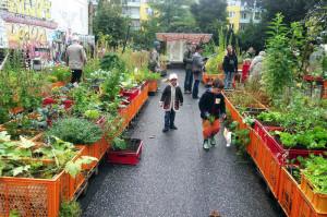 Urbani vrt Hamburg